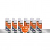HEYLO POWER CLEAN Spraydose 250 ml Klimadesinfektion - 12er Pack